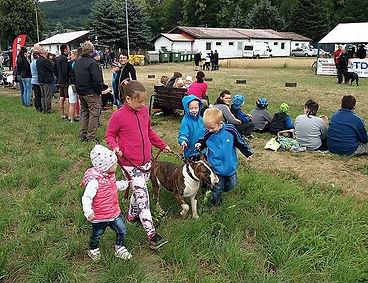 Děti a bulterier