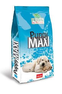 Puppy MAXI 3D final.jpg
