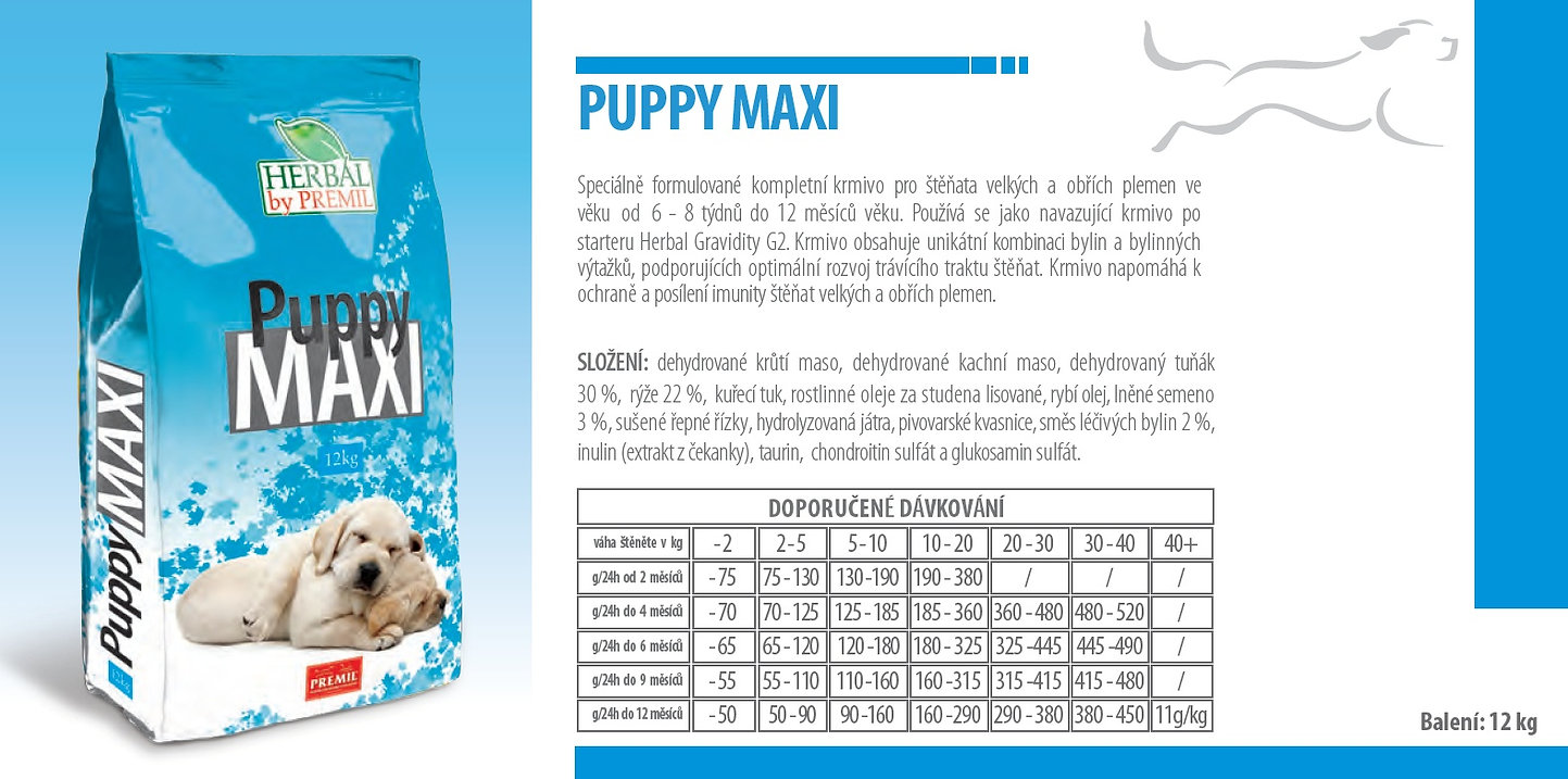 Puppy Maxi.jpg