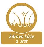 logo srst.png
