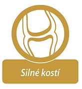 logo kosti.png