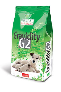 G2 3D final.jpg