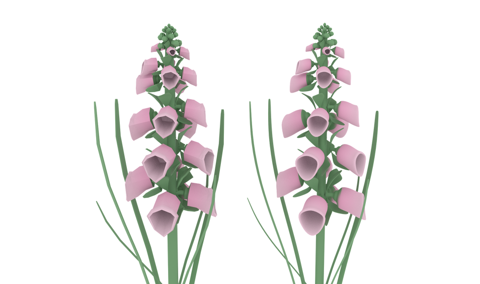 Low Poly Foxglove Textured