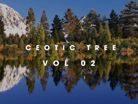 CEOTIC STUDIO TREE Vol 2 - Thư viện cây ngoại thất dành cho V-Ray Sketchup
