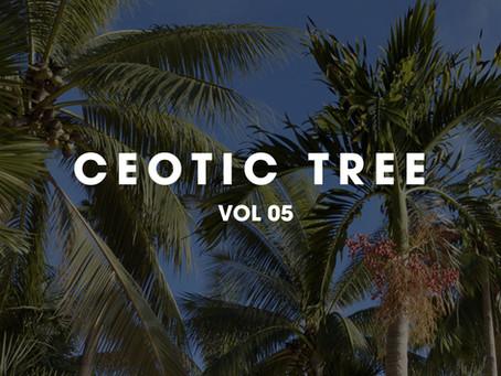 CEOTIC STUDIO TREE VOL 5 _ Cây họ dừa p1