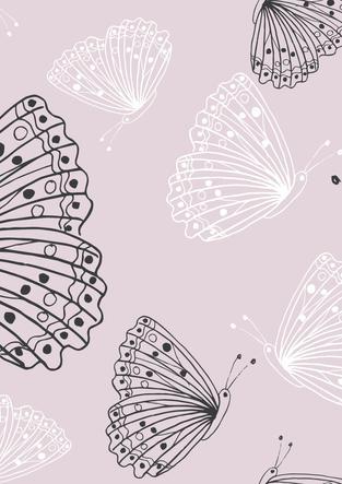 sundown butterfly.jpg