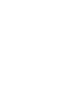 white-flowers.png