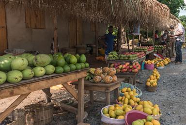 Мы папали в сезон фруктов. Свежайшие ароматные плоды можно было подбирать под деревьями, а можно и купить.