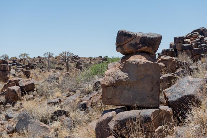 Намибия. Бегемот