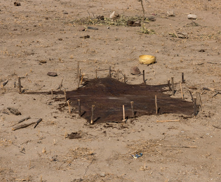 Накануне ночью была удачная охота. Сушится шкура антилопы куду.