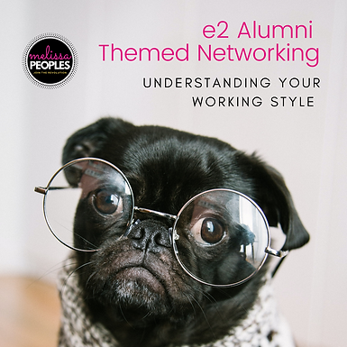 e2 Conference Alumni | Understanding Your Working Style