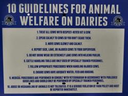 welfare on diaries