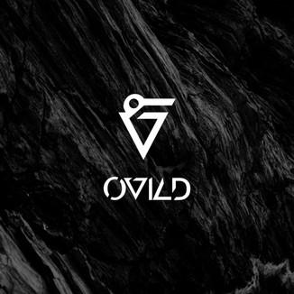 OVILD DJ
