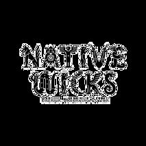 Native Wicks Cotone per Sigarette Elettr