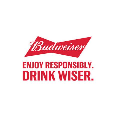 CSR DRINK WISER.jpg