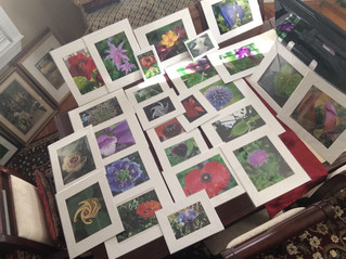 Matted prints