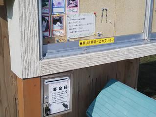 近所の象潟猫小屋情報