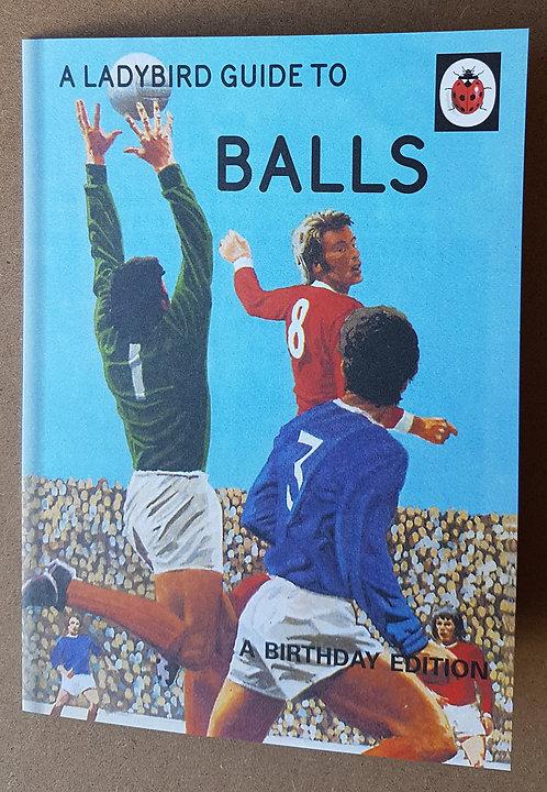 Ladybird Guide, Balls - Greeting Card