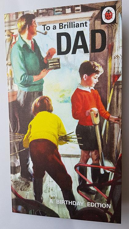 Dad Birthday Card - Humour, Ladybird Range