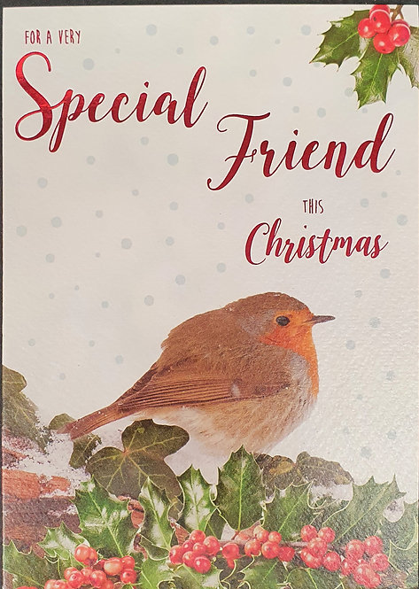 Special Friend Christmas Greeting Card With Robin
