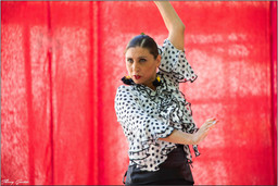 Flamenco Oriental (1).jpg