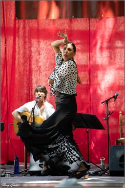 Flamenco Oriental (2).jpg