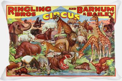 Circus Beauties