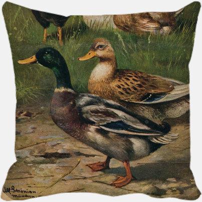 Two Quacks