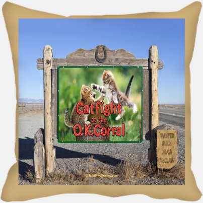 Catfight At The O.K. Corral