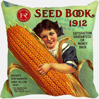 My Sweet Corn