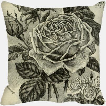 Rose At Dusk