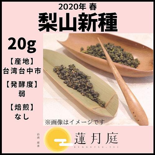 【2020年 春】梨山新種   20g