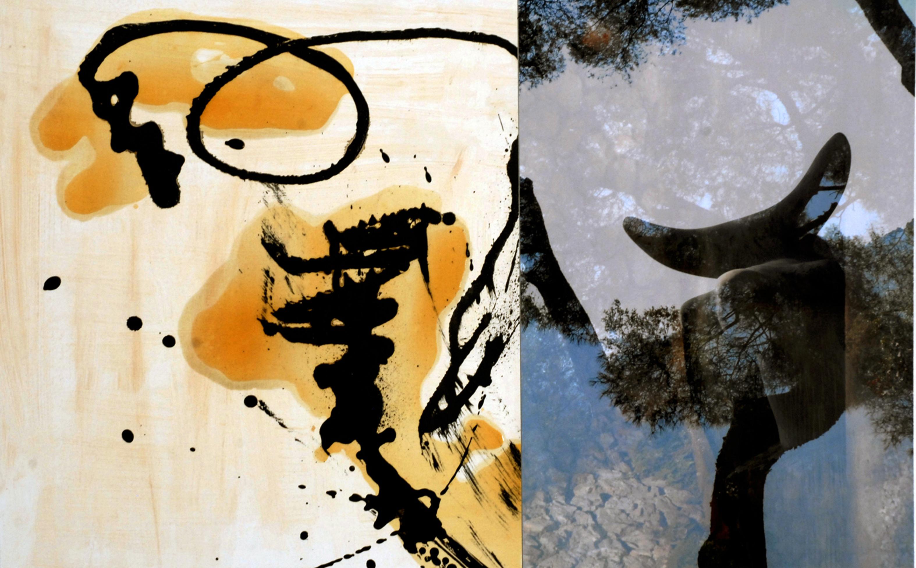 Miro et le Zen 300