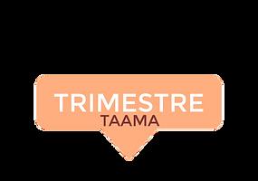 Trimestre (TAAMA)