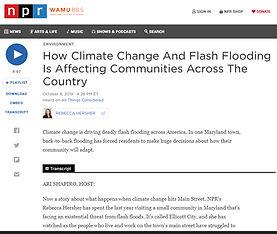 NPR 10-08-19.jpg