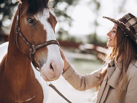 Passeio a Cavalo no Haras Haddad em Atibaia