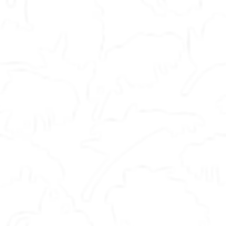 Shrivelled Leaves White