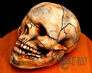Realistic Skull cake