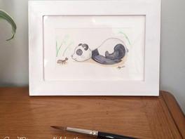 Plukaposer série panda