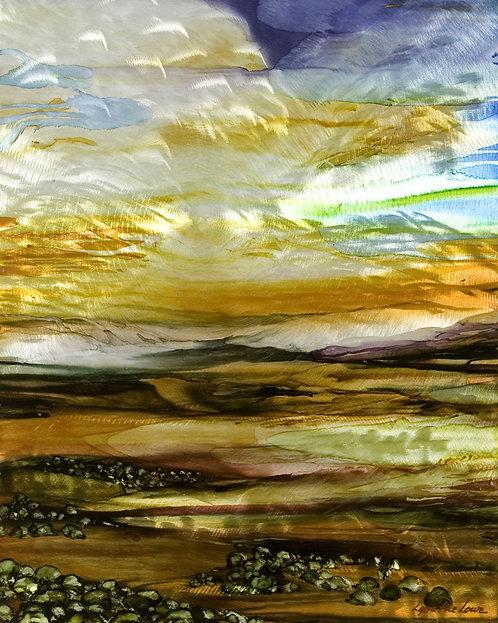 Sonoran Desert 16 x 20 Metal Print