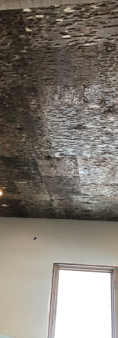 Office barkwood ceiling
