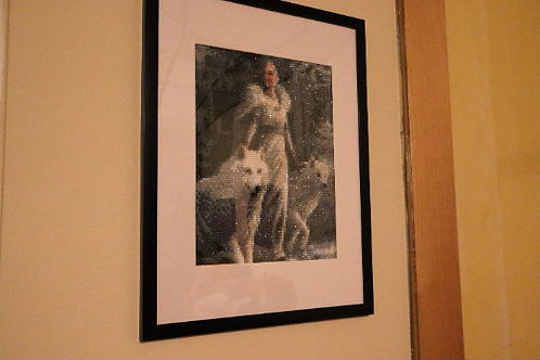 Lady with White Wolves - Finished Diamond Painting