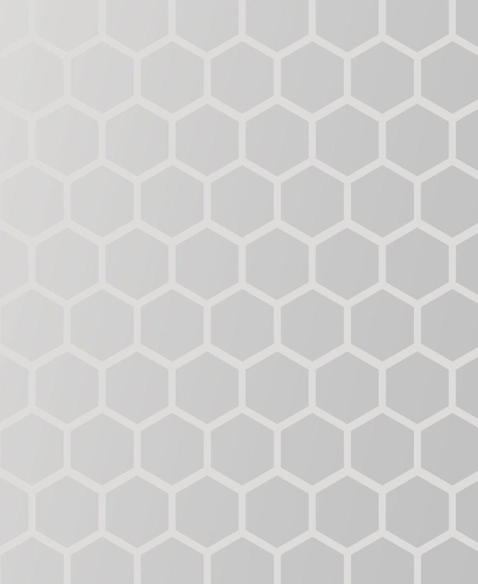 Gradient-Hexagons_edited.jpg