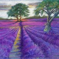 swa-lavender-with-treesjpg