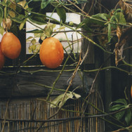 fruitsofautumn-mhughesjpg