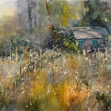 The_Gardeners_Shed_high_summer_Hill_4342