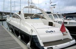 charlie-2-rear