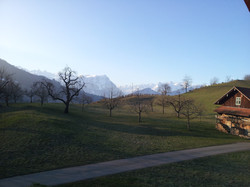 Blick in die Bergen