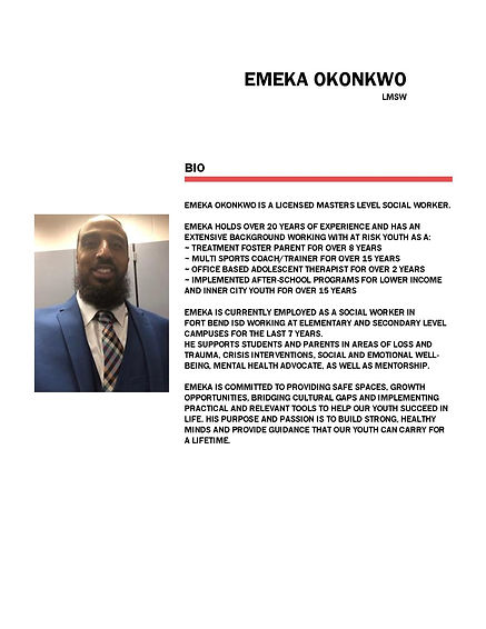 PROFESSIONAL BIO - EMEKA  OKONKWOOZU3B0C