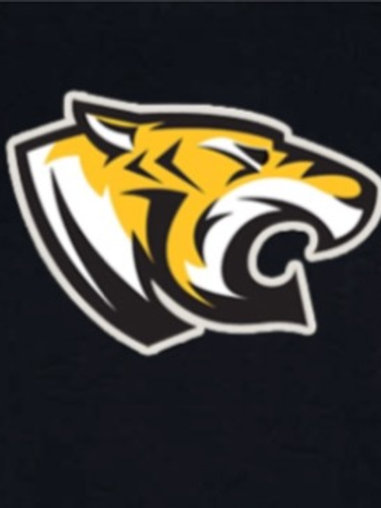 Short Sleeve Big Tiger Logo T-Shirt